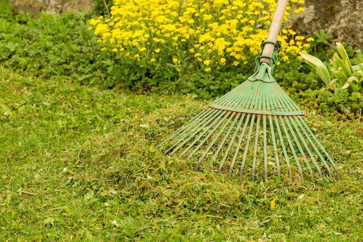 Gartenarbeit im Fruehling | © panthermedia.net / Sabine Katzenberger
